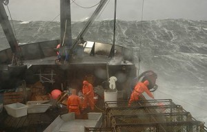 The deadliest catch …